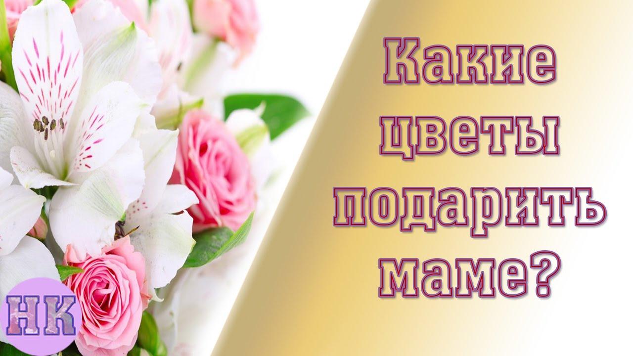 Какие цветы подарить маме в знаменательный день: лучшие советы