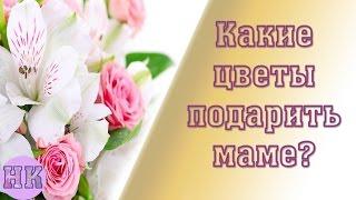 видео Какие цветы подарить девушке на день рождения?