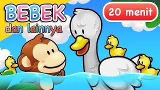 Download Lagu Anak | Bebek dan Lainnya | 20 Menit
