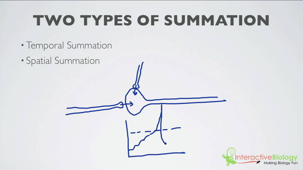 019 What is Summation (2 Types) - YouTube