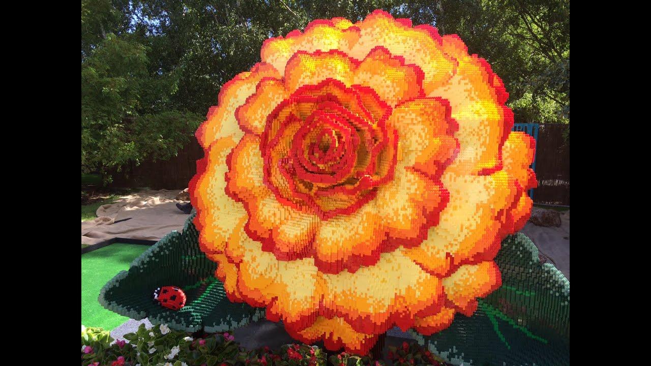 World 39 S Largest Lego Begonia Flower 2015 Ballarat