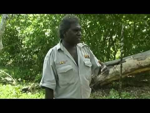 Kakadu and Pt. Stuart, Australian Travel Video Guide