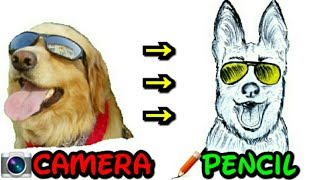 How To Draw A Funny Dog By Pencil | Artistic Mind