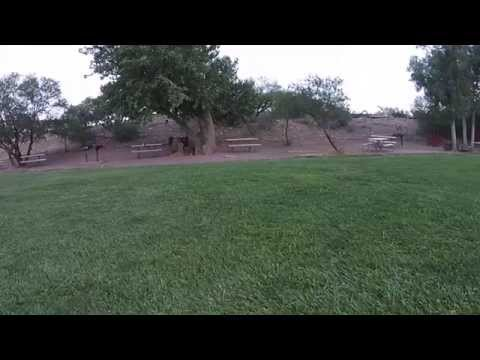 Spring Mountain Ranch State Park - Las Vegas, NV - Drone Flight