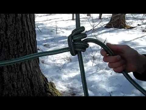 Tree Climbing Tutorial