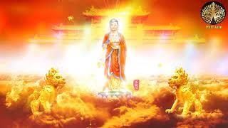 Niệm Phật Một câu phước sanh vô lượng, Ai có duyên với phật nghe Pháp sư tịnh không giảng lời phật