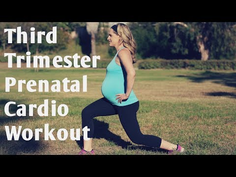 Third Trimester Prenatal Cardio Workout-But Good for ANY Trimester of Pregnancy!
