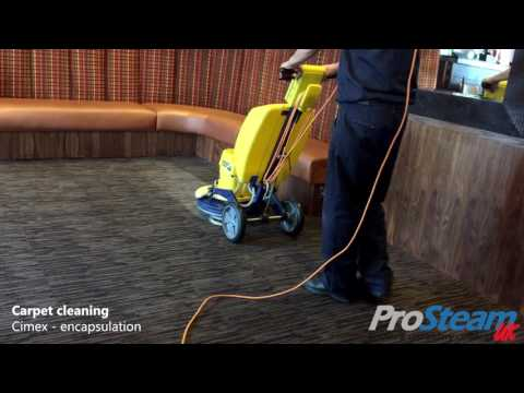 Restaurant - Carpet & LVT Cleaning