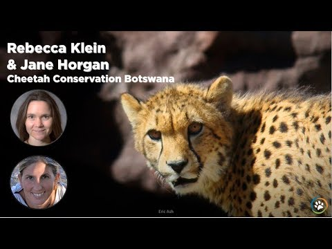 WCN Fall Expo 2017 - Cheetah Conservation Botswana- Rebecca Klein and Jane Horgan