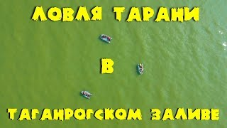 Ловля тарани в Таганрогском заливе. Рыбалка с лодки.