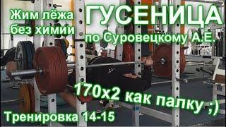 ГУСЕНИЦА по Суровецкому А.Е. Видео: 6