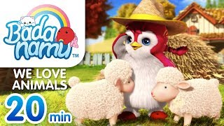 We Love Animals | Badanamu Compilation l Nursery Rhymes & Kids Songs