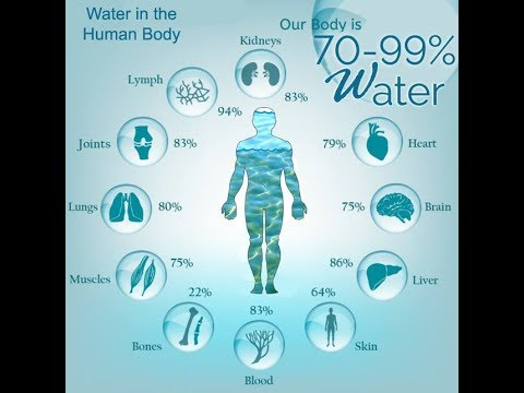 an analysis of the importance of water for the human body The importance of electrolytes in the human body for athletes and  importance for athletes  although you can also add sodium chloride to water to get.