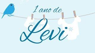 Baixar Levi 1 ano   (Promete - Ana Vilela)