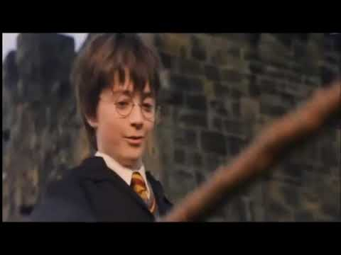 Poor Ron | Harry Potter Short Parody