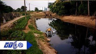 Hà Nội: Cận cảnh được rau tưới nước đen ngòm | VTC