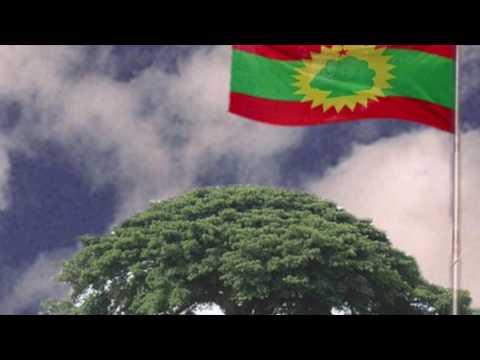 Radio Oromia Multicultural Month