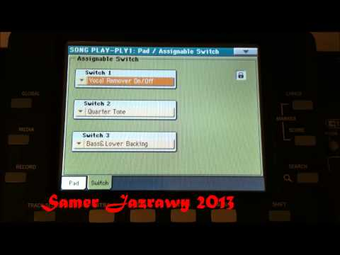 Korg Pa3x Vocal Remover by Samer Jazrawy 2013