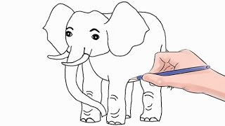 How to Draw an Elephant Easy Step by Step