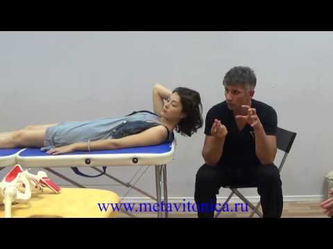 Метавитоника: Коррекция нижних шейных позвонков