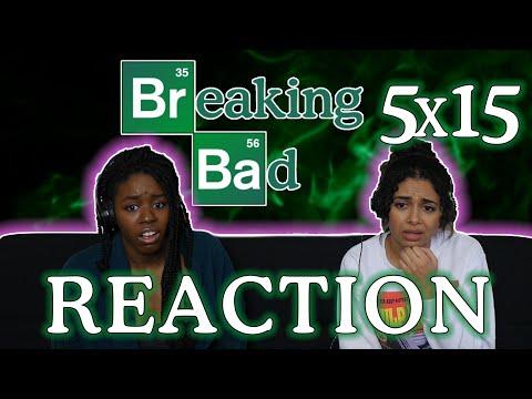 Breaking Bad 5x15 REACTION!!