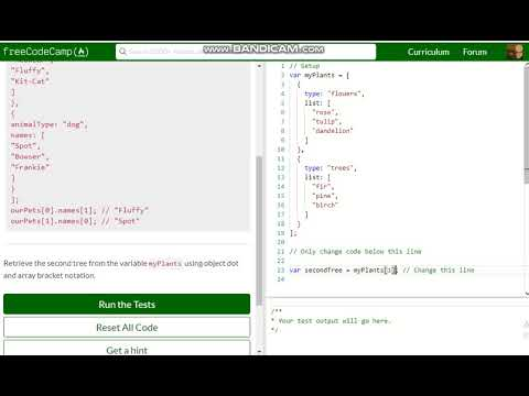 Basic JavaScript Accessing Nested Arrays free code camp Dani