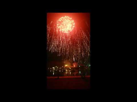New year firework show