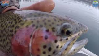 Download Video Fishing South Twin Lake With COFR - Feb 15th, 16th And 17th 2018 MP3 3GP MP4