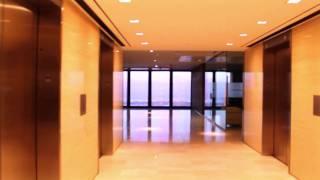 TD Centre - Mies Van Der Rohe - A ROSEROCK film