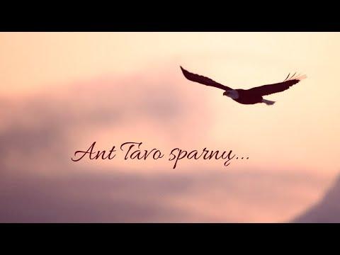 2020-05-03- -anželika-krikštaponienė- -ant-tavo-sparnų...
