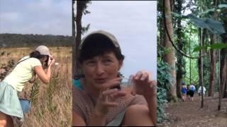 Отпуск на Гавайях. Отзыв участницы тура(Ольга, участница тура на Гавайи в 2015 году делится своими впечатлениями о путешествии. Любите активный отдых..., 2016-08-27T00:57:25.000Z)