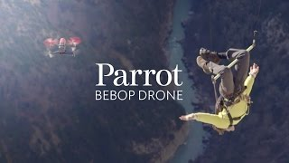 Catching Bebop Drones - with the FLYING frenchies