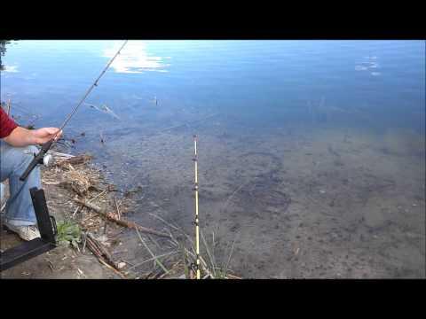 Fishing Trip: 8/27/13 Willow Pond Catfishing
