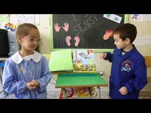 scuola primaria 2013/14 - classi prime - Conoscere i 5 sensi