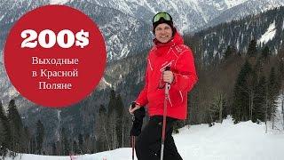 Как переехать в Краснодар и каждые выходные ездить в Красную Поляну