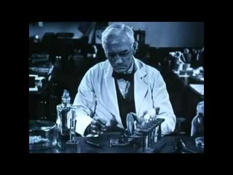 How Alexander Fleming Accidentally Discovered Penicillin