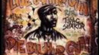 DJ Screw / 2pac Outlaw