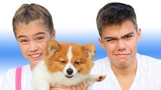 قصة مفيدة عن شوكة ورعاية الحيوانات من ناستيا مع ارتيم
