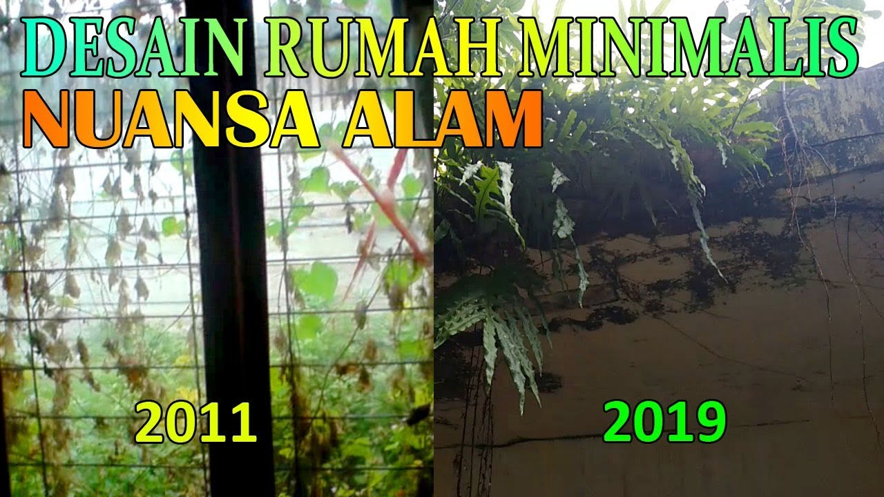 Rumah Bernuansa Alam Minimalist Home Design With Natural Nuances