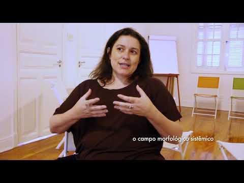 O Campo Sistêmico por Flavia Vivacqua