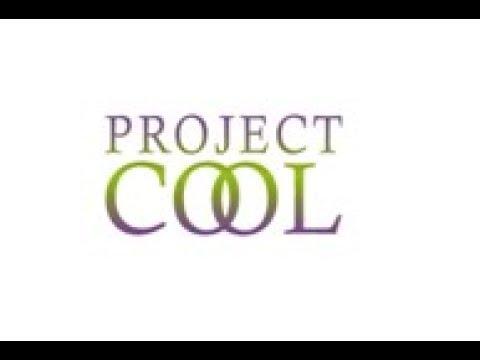 Суть бизнеса Project COOL