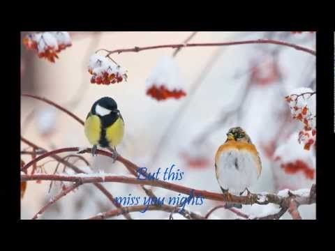 MISS YOU NIGHTS-Westlife with LYRICS