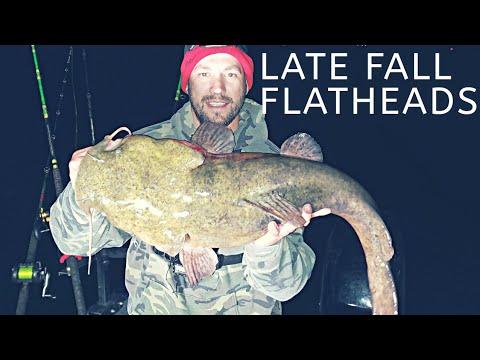 Targeting Late FALL FLATHEAD CATFISH In COLD Water
