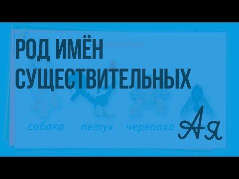 Видеоурок по русскому языку Изменение имён существительных по падежам (склонение)