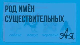 Имя существительное. Род имён существительных. Видеоурок  по русскому языку 2  класс
