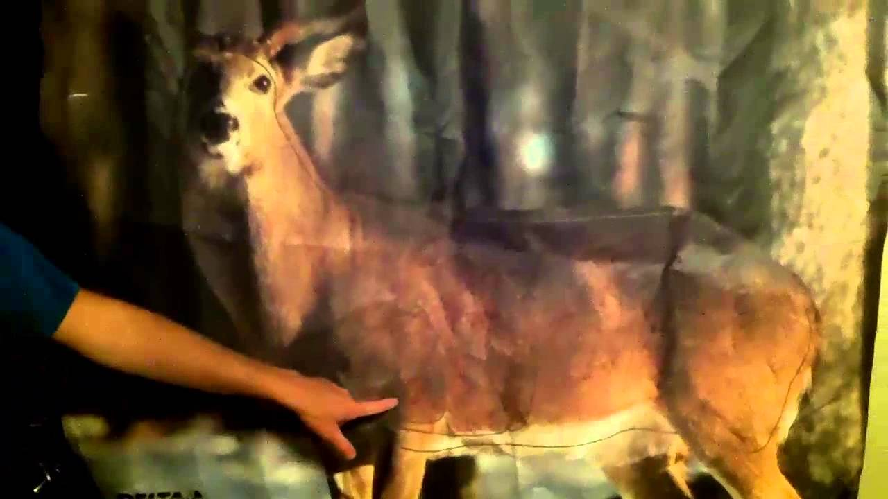 Shot Placement On A Deer You Stop - YouTube