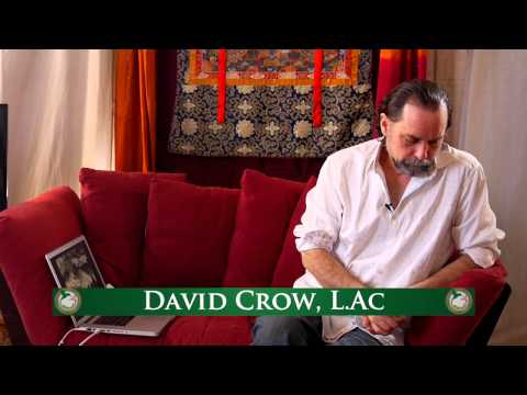 How to Use Essential Oils To Support Respiratory Health  With David Crow L.Ac