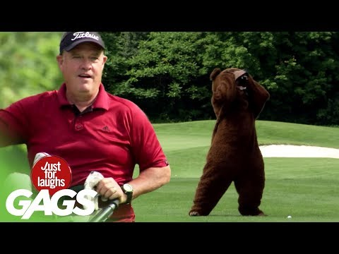 Bear on the Golf Course