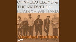 Play Vanished Gardens
