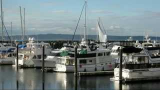 Salty Dog Boating News  - Trawlers Cruising the NW